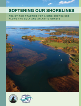 Softening Our Shorelines: Policy and Practice for Living Shorelines Along the Gulf and Atlantic Coasts