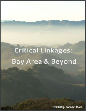 Critical Linkages: Bay Area and Beyond
