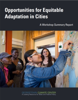 Opportunities for Equitable Adaptation in Cities: A Workshop Summary Report