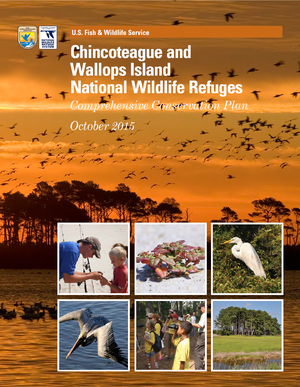 Chincoteague National Wildlife Refuge Restoration and Relocation Efforts