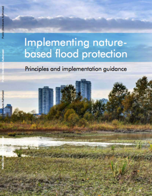 Implementing Nature-Based Flood Protection: Principles and Implementation Guidance