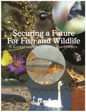 Iowa Wildlife Action Plan - Securing a Future for Fish and Wildlife: A Conservation Legacy for Iowans