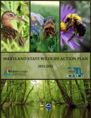 Maryland State Wildlife Action Plan (2015-2025)