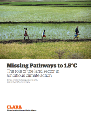Missing Pathways to 1.5°C - The Role of the Land Sector in Ambitious Climate Action