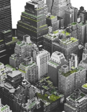 New York City Green Roof Property Tax Abatement Program
