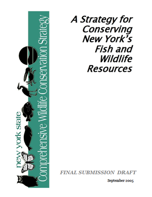 New York State Comprehensive Wildlife Conservation Strategy