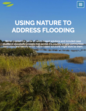 Using Nature to Address Flooding - Naturally Resilient Communities Website