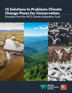 14 Solutions to Problems Climate Change Poses for Conservation - Examples from the WCS Climate Adaptation Fund
