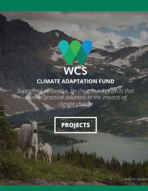 Wildlife Conservation Society Climate Adaptation Fund