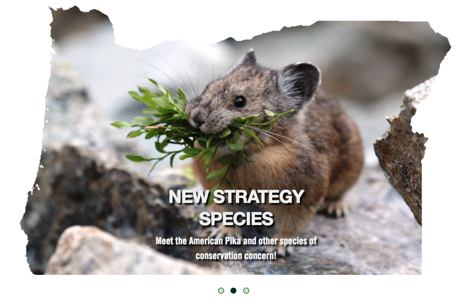 Oregon Conservation Strategy State Wildlife Action Plan
